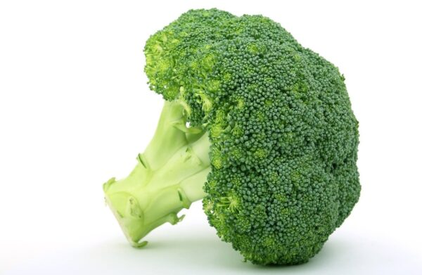 appetite, broccoli, brocoli broccolli-1238251.jpg