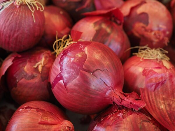 red onions vegetables, vegetable onion, onion