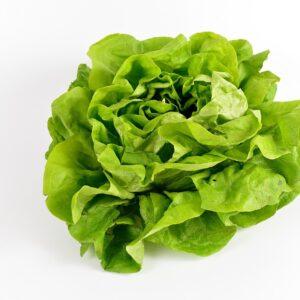salad, green, vegetables